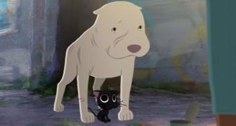 Questo incantevole corto sull'amicizia tra un pit bull e un gattino nero vi farà scendere una lacrima