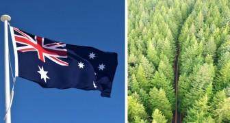 Australien wird eine Milliarde neue Bäume pflanzen, um den Klimawandel zu stoppen