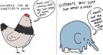 Un illustrateur a dessiné des faits tristes sur les animaux qui vous feront rire et attendrir en même temps