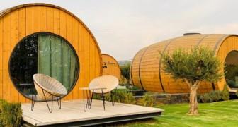 Der Traum der Weinliebhaber wird wahr: Auf diesem Bauernhof können Sie in riesigen Fässern übernachten