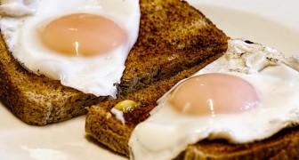 Was würde mit unserem Körper passieren, wenn wir anfangen würden, zwei Eier pro Tag zu essen?