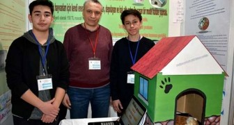 Twee studenten vinden een door zonne-energie verwarmd hondenhok uit om zwerfhonden en katten te redden van de winterkou