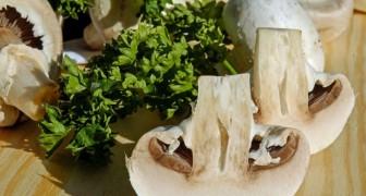 Manger des champignons deux fois par semaine réduit le risque de déclin cognitif, selon une étude