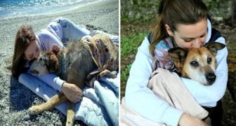 Questa ragazza adotta solo i cani più anziani, perché non sopporta che muoiano nei canili