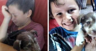 Salva un cucciolo che altri bambini stavano maltrattando e lo porta dal veterinario: poco dopo sono inseparabili