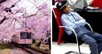 Diese 20 Fotos beweisen, dass Japan einer der unglaublichsten Orte der Welt ist