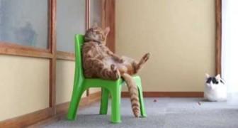 Quero ficar sentado