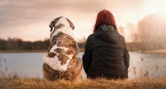 Der Tod eines Haustieres schmerzt so sehr wie der Verlust eines geliebten Menschen, sagt die Psychologie