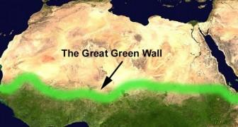 De Grote Afrikaanse Groene Muur: 8 duizend kilometer bomen tegen de oprukkende woestijn
