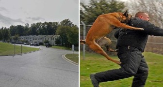 Ein Mann nähert sich einem 10-jährigen Mädchen, aber er weiß nicht, dass ihr Hund sie im Auge behält