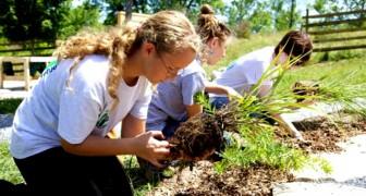Gartenarbeit tut genauso gut wie das Fitnesstudio: Eine Studie erklärt, warum