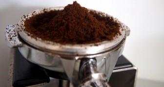 17 idées simples pour utiliser le marc de café : après avoir lu l'article, vous ne le jetterez plus