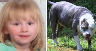 A little girl missing for two days returns home safe and sound! Her pit bull dog had protected her night and day!