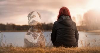 Het verliezen van een viervoeter kan net zo erg zijn als het verliezen van een geliefde