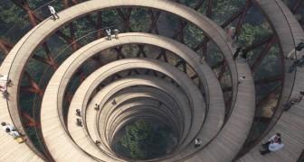 Dieser Spiralturm ermöglicht es, über den Bäumen spazieren zu gehen und beeindruckende Panoramen zu genießen