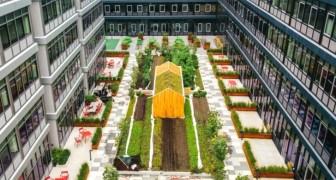 Dieses Wohngebiet verfügt über einen fast 500 Quadratmeter großen Stadtgarten: Die Bilder sind atemberaubend