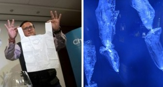 Hier ist der Solubag, der revolutionäre Plastikbeutel, der sich in 5 Minuten in Wasser auflöst