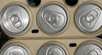 Emballage de bière comestible : l'idée d'une start-up pour sauver les animaux marins