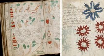 I ricercatori ritengono di aver craccato il manoscritto più misterioso del mondo: ecco cosa contiene