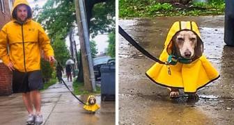18 schattige foto's die laten zien hoe ver de liefde van de mens voor zijn huisdier kan gaan