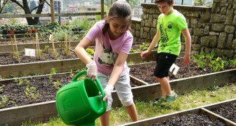 Un orto didattico per insegnare ai bambini a rispettare il cibo e la Natura: l'iniziativa di una scuola di Brescia