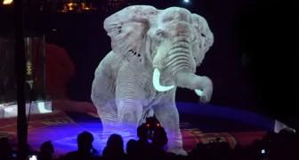 Questo circo ha detto NO agli spettacoli con animali: al loro posto spettacolari ologrammi
