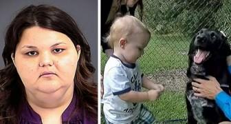 O cachorro da família é agressivo com a babysitter: graças a ele os pais descobrem uma terrível verdade