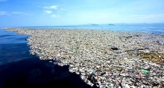 Anche l'Italia ha la sua Isola di Plastica: ecco dove si trova e qual è la sua origine
