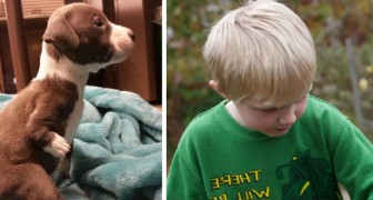 A child with disabilities adopts a puppy with walking problems and since then they are best friends