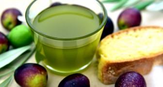 La rivincita dell'olio extra-vergine di oliva: ormai gli esperti lo considerano un farmaco naturale