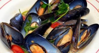 I molluschi che mangiamo sono pieni di microplastiche: l'oceano ci restituisce i nostri rifiuti