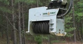 Look at how this scary machine destroys a whole trees