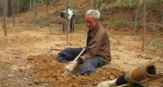 Seit 20 Jahren pflanzt der 70-jährige behinderte Mann jeden Morgen Bäume: Heute hat er einen üppigen Wald um sich herum