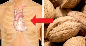 Le noci: ecco la frutta secca che fa dimagrire e protegge il nostro cuore