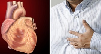 Six months before a heart attack the body can send signals: they are often harmless, but it is good to keep them in mind