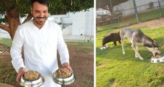 Donner des restes de nourriture aux chiens vivant dans des refuges : cet hôtel de luxe combat ainsi le gaspillage