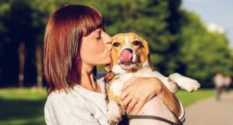 Algunas personas aman más a sus propios perros que a los otros seres humanos: un estudio explica porqué