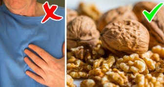 Walnuts are a powerful ally for our health and here are all their beneficial properties