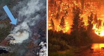 Catastrophe environnementale dans l'Arctique : des incendies indomptables dévastent plus de 800 000 hectares de forêts