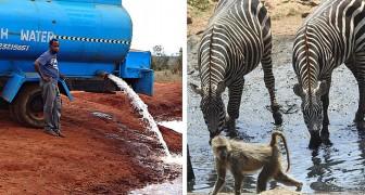 Die Geschichte des Wassermannes, der jeden Tag sauberes Wasser zu durstigen Wildtieren bringt