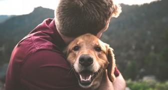 O donos de cães tendem a ser mais felizes que os donos de gatos, é o que sugere uma pesquisa