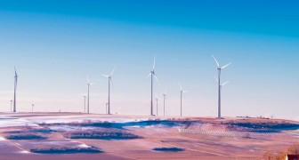 Germania: nel 2019 le fonti rinnovabili hanno prodotto più energia del carbone e del nucleare