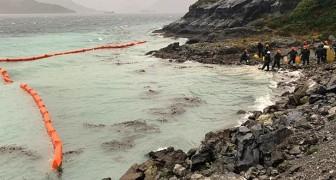 Veertigduizend liter diesel komt in Patagonië in zee terecht, in een van 's werelds ongereptste gebieden