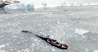 La Groenlandia ha perso 197 miliardi di tonnellate di ghiaccio nel solo mese di luglio 2019