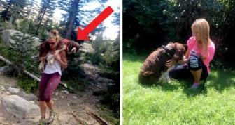 Esta excursionista salva un perro herido y lo lleva sobre sus espaldas por 10 km