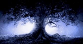 Test dell'Albero di Koch: disegnate un albero e vi sveleremo quali emozioni state provando