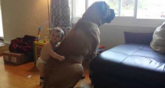 A young man with a the gentle giant