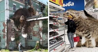 Dieser russische Künstler zeigt uns, wie der Planet Erde aussehen würde, wenn er von Katzen dominiert würde....gigantisch!