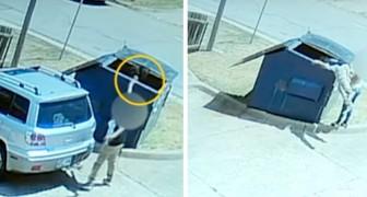 Una donna senza scrupoli lancia un cane nel cassonetto, ma il gesto non rimane impunito