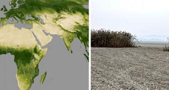Seit mehr als 20 Jahren wird die Erde nicht mehr grün: Die Wüstenbildung schreitet immer weiter voran